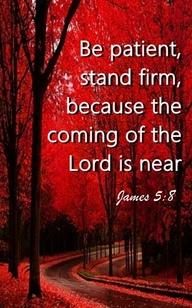 Bible verse 6
